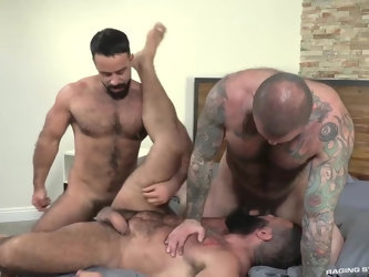 Three hot bears Teddy Torres, Alex Tikas, Alexander Kristov