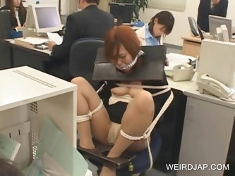 Japanese tied up on the chair